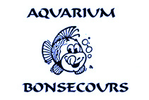 Aquarium Bon-Secours